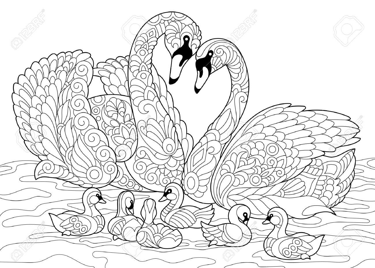 Página Del Libro Para Colorear De La Familia De Los Pájaros Del Cisne Dibujo De Bosquejo A Mano Alzada Para El Colorante Antistress Adulto Con