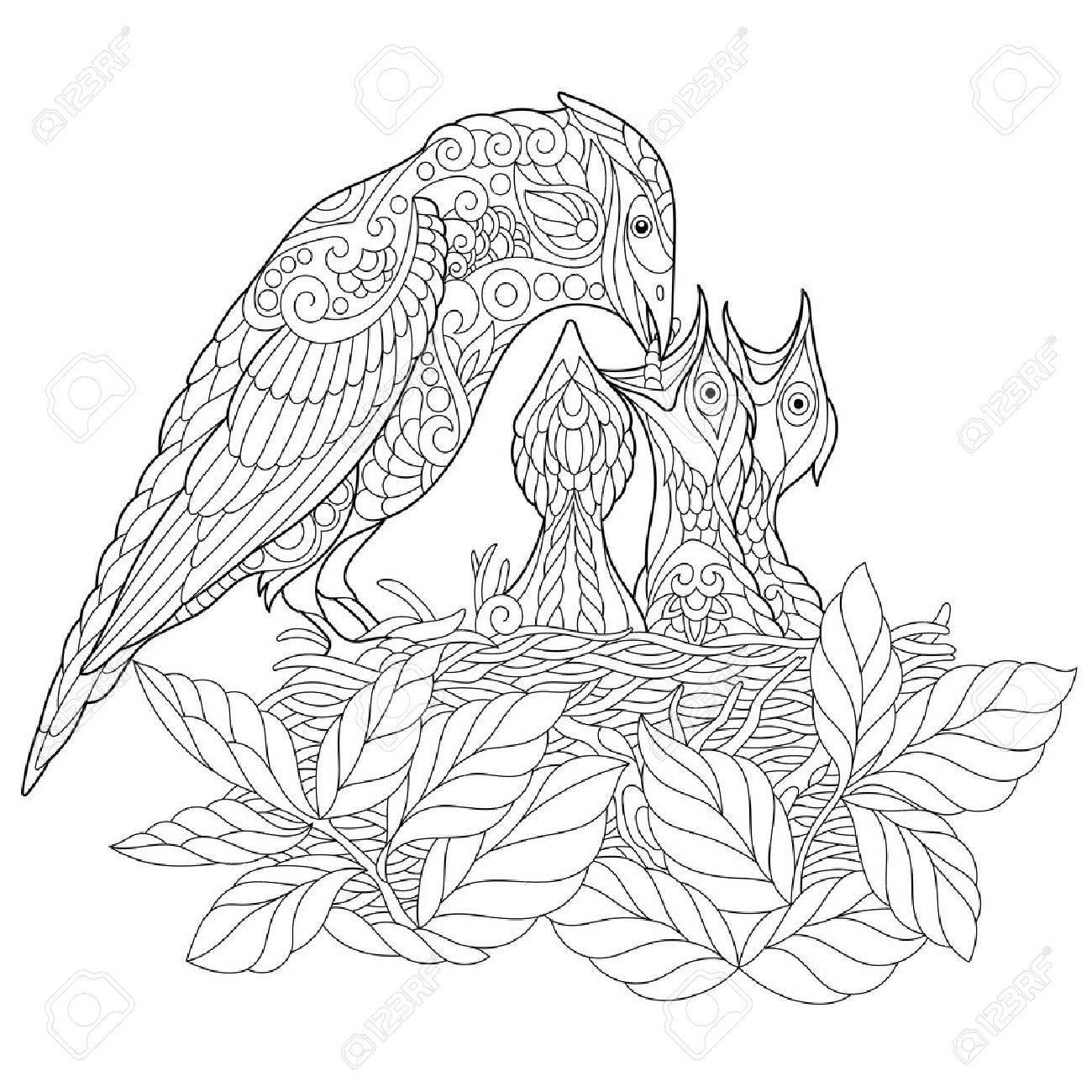 Página Del Libro Para Colorear De Aves Jay Alimentar A Sus Pichones Recién Nacidos Dibujo De Bosquejo A Mano Alzada Para El Colorante Antistress