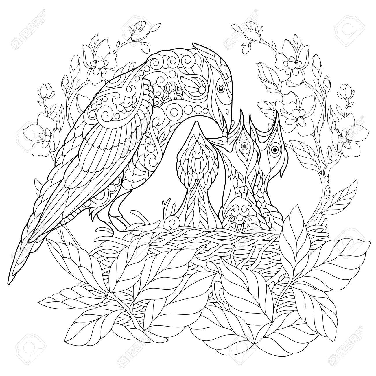 Coloring Book Page Of Jay Bird Feeding Its Newborn Nestlings Freehand Sketch Drawing For Adult