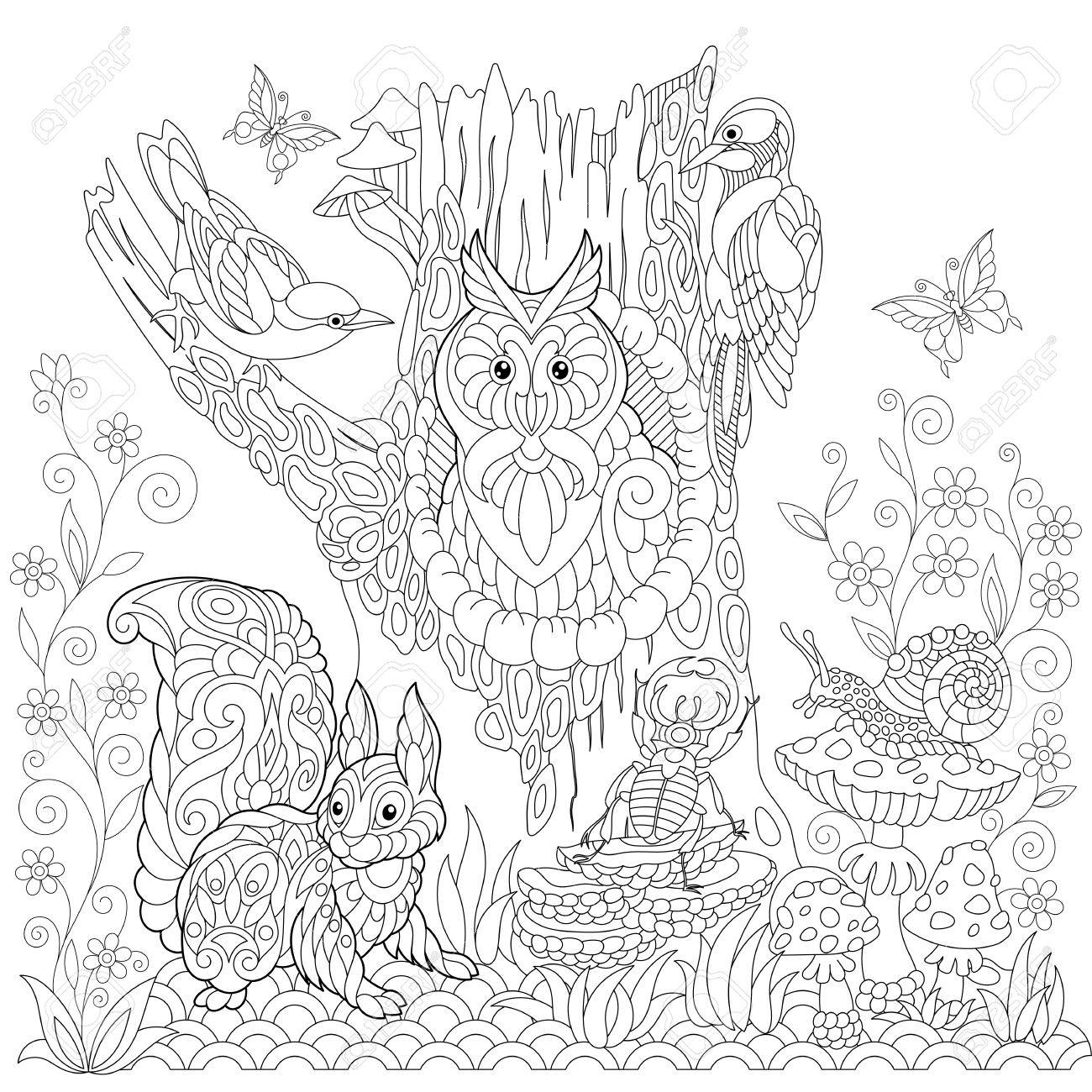 Coloriage Fleur Coucou.Livre Pour Colorier Page De Paysage Forestier Hibou Oiseau Coucou
