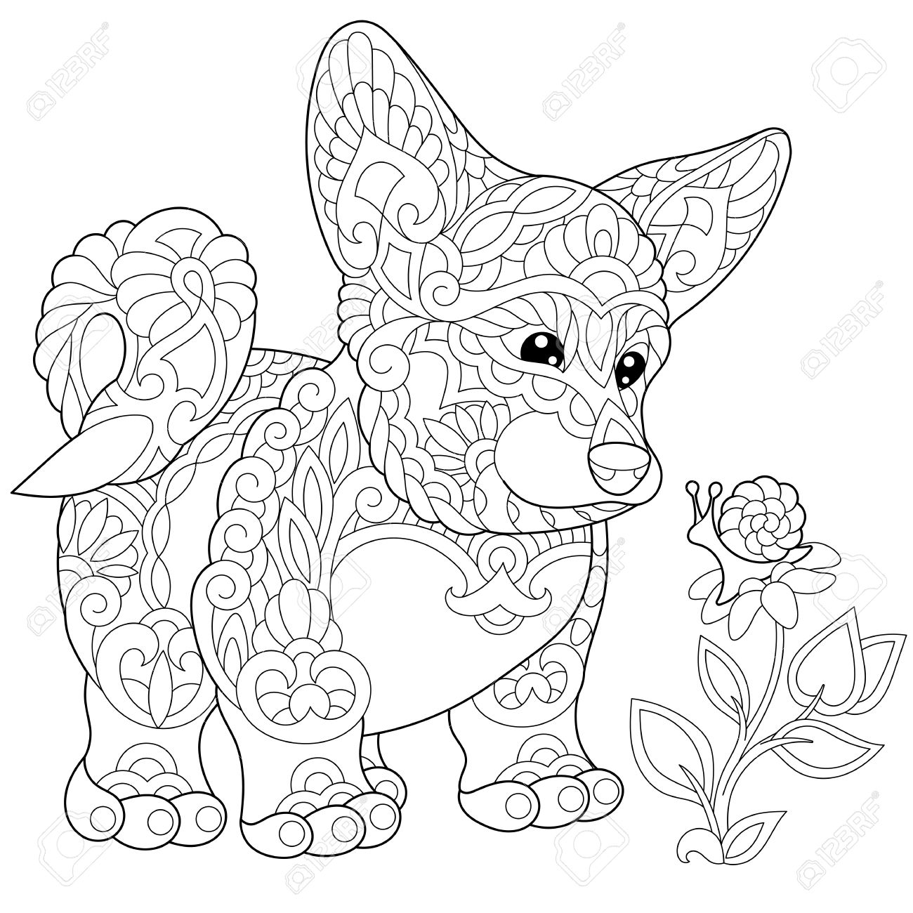 coloring page of cardigan welsh corgi puppy freehand sketch