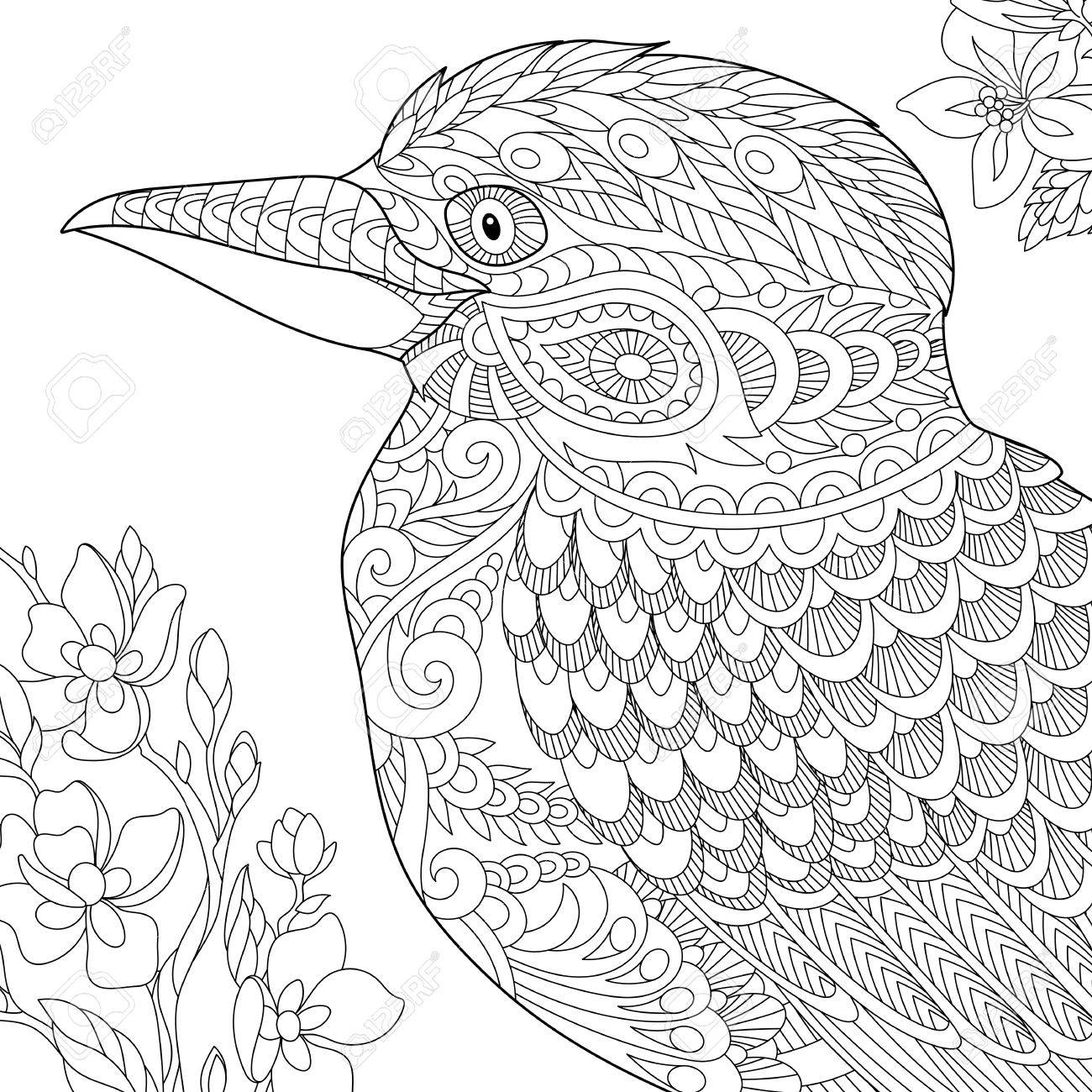 Coloring Page Of Australian Kookaburra Bird Freehand Sketch Drawing For Adult Antistress Book