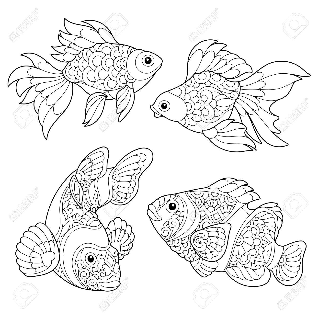 Coloring Page Of Goldfish And Clown Fish Freehand Sketch Drawing