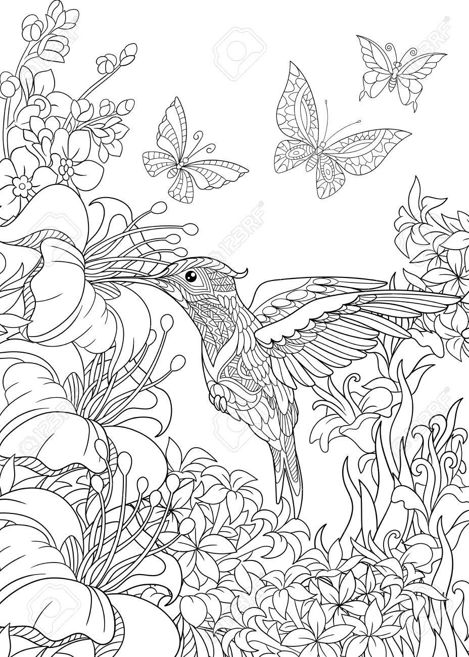 Coloring Page Of Hummingbird Butterflies And Hibiscus Flowers Freehand Sketch Drawing For Adult Antistress