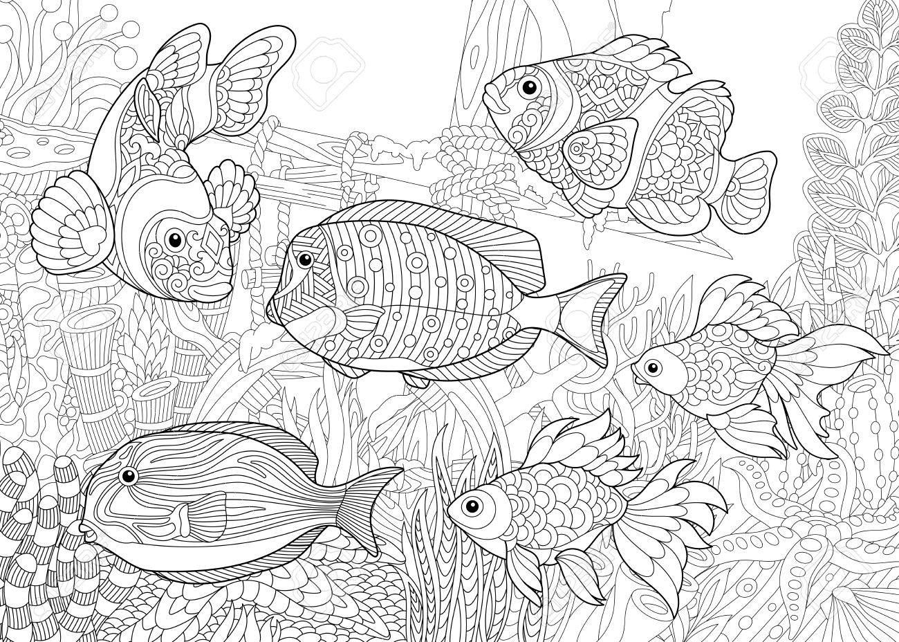 Coloring Page Of Underwater World Royalty Free Cliparts Vectors And Stock Illustration Image 85857381