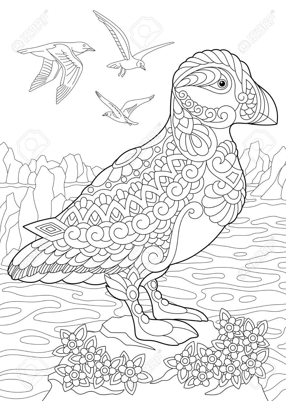 Coloring Page Of Puffin, A Hole-nesting Auk (seabird) Of Northern ...