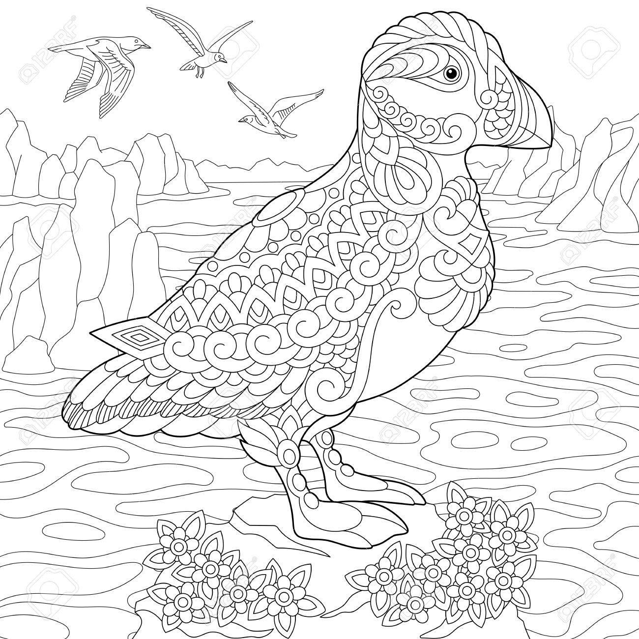 北部と北極海の海鳥ツノメドリのページのぬりえフリーハンド スケッチ