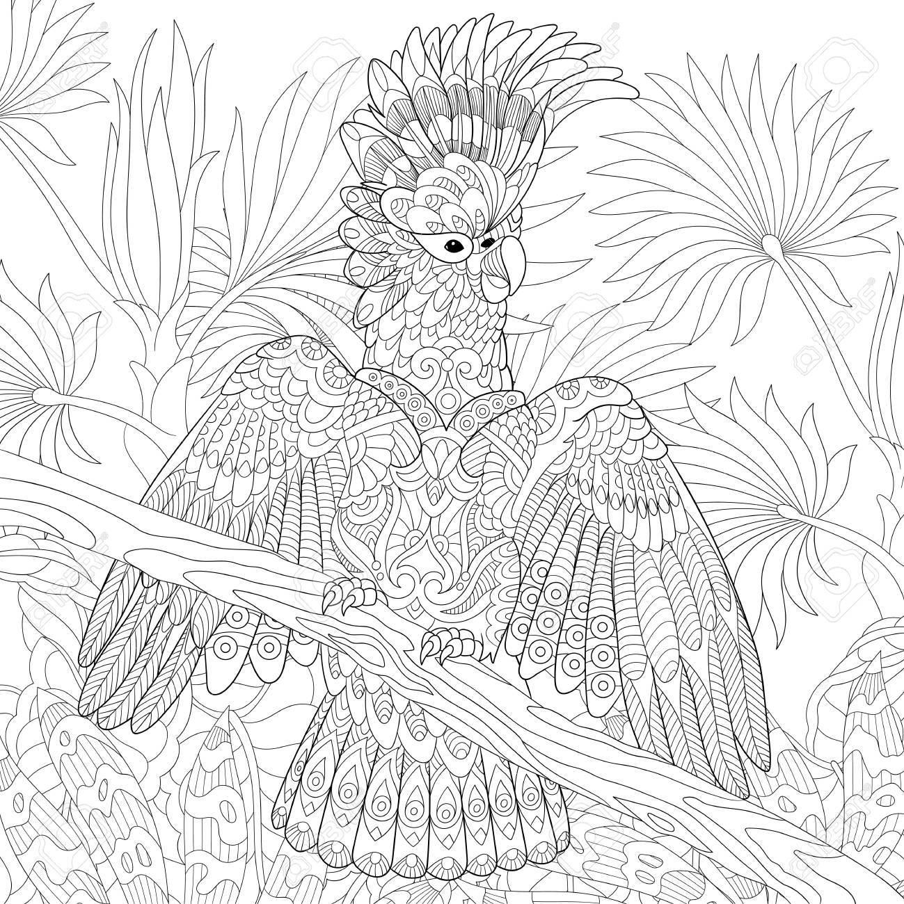 Coloriage Anti Stress Perroquet.Coloriage De Perroquet Cacatoes Australien Dans La Foret Tropicale De La Jungle Dessin De Croquis A Main Levee Pour Le Livre De Coloriage Antistress