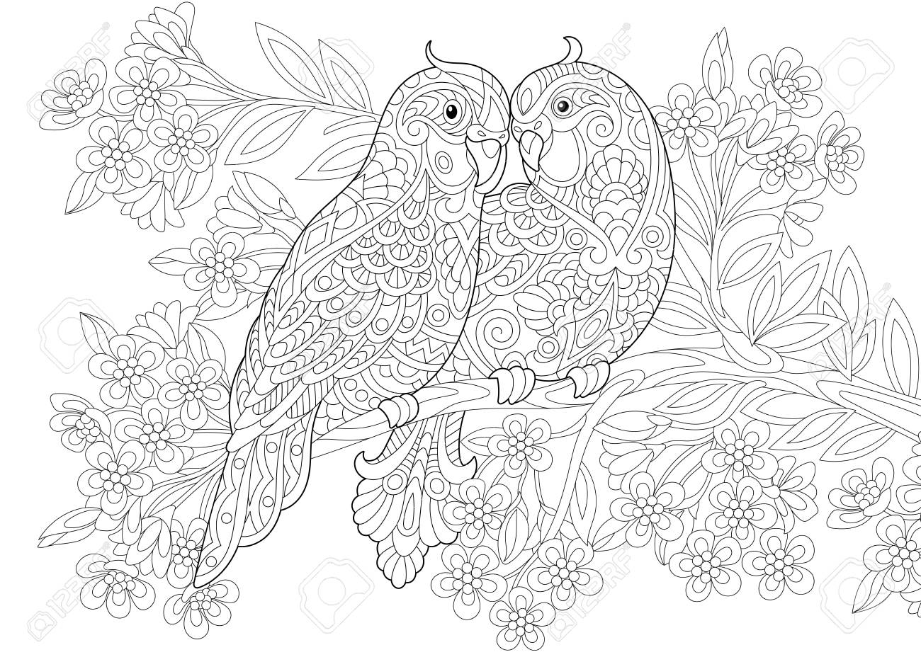 Coloring Page Of Two Parrots In Love And Floral Background With