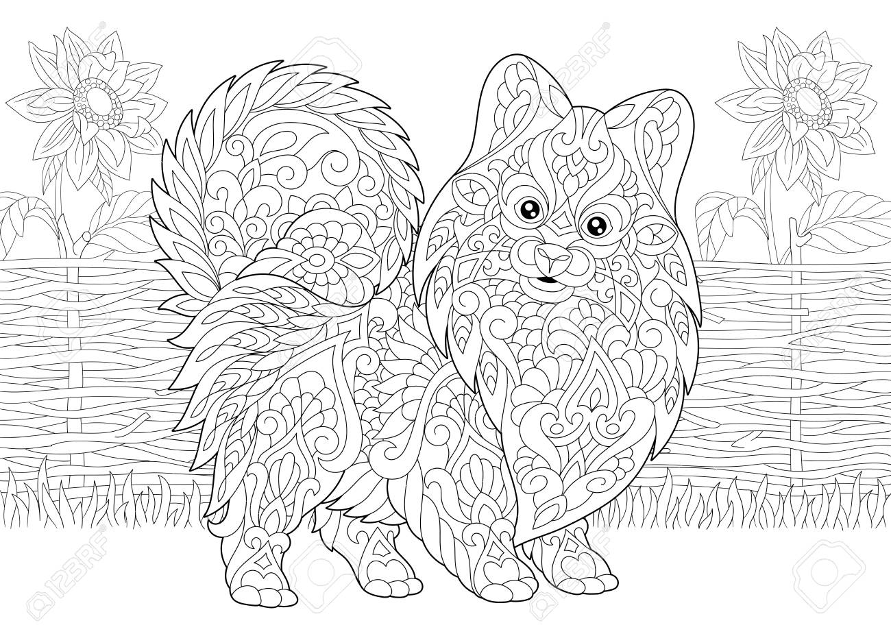 Coloring Page. Adult Coloring Book. Pomeranian Spitz, Dog Symbol ...