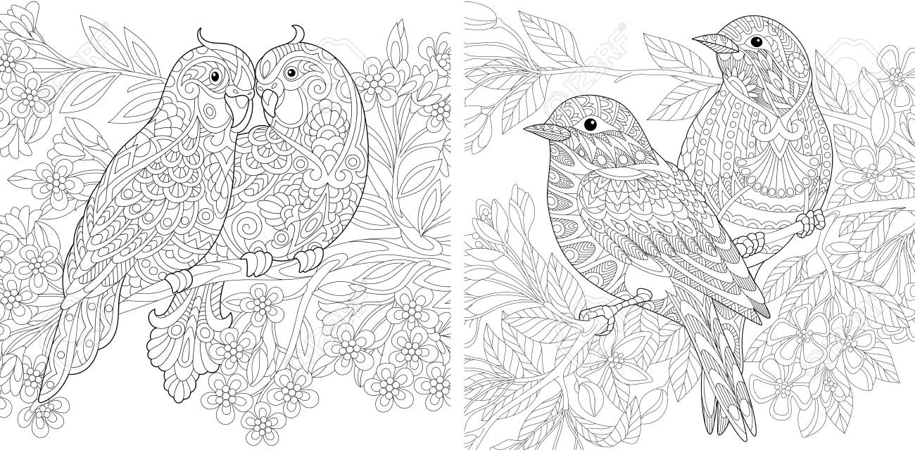 Coloring Page. Adult Coloring Book. Budgerigar parrots in love...