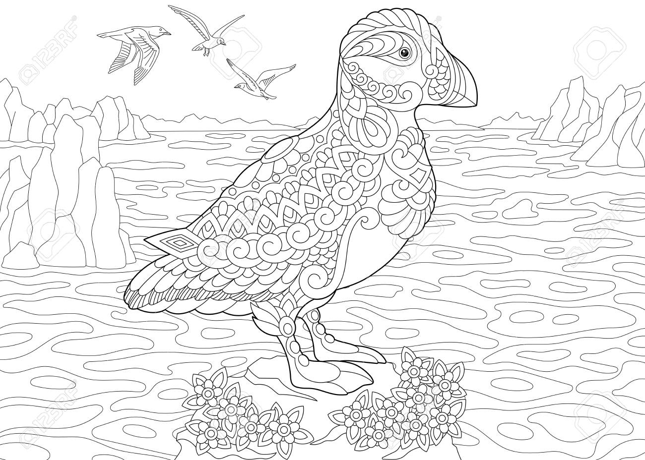 Coloring Page. Adult Coloring Book. Puffin, A Hole-nesting Auk ...