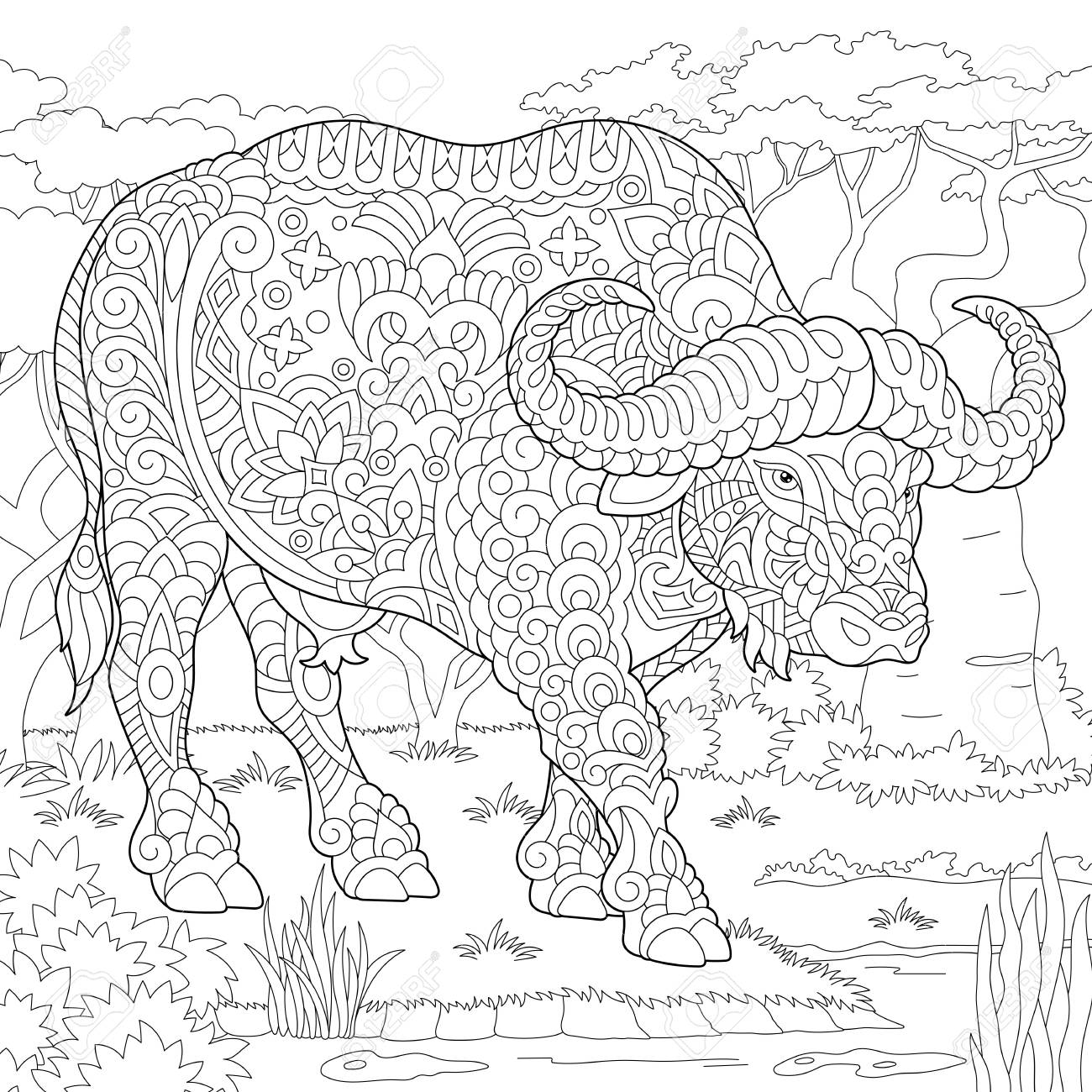 Buffalo. Bull. Coloring Page. Colouring Picture. Adult Coloring ...