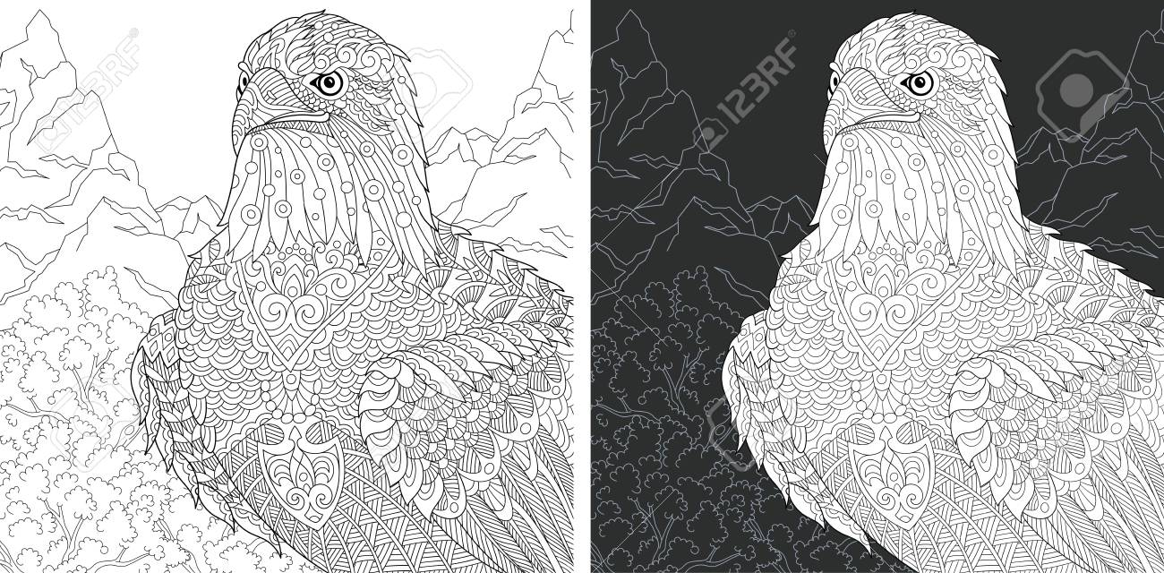 Eagle Coloring Page Coloring Book Colouring Picture With Bald