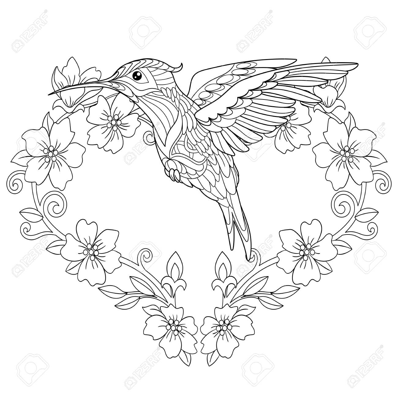 Coloring Page. Coloring Book. Colouring picture with hummingbird..
