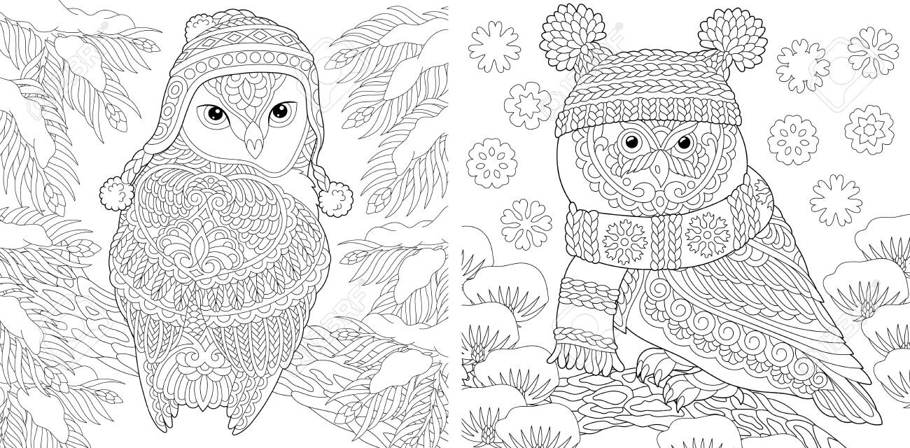 Animal Coloring Pages Cute Owls In Winter Hats Line Art Design Royalty Free Cliparts Vectors And Stock Illustration Image 146991218