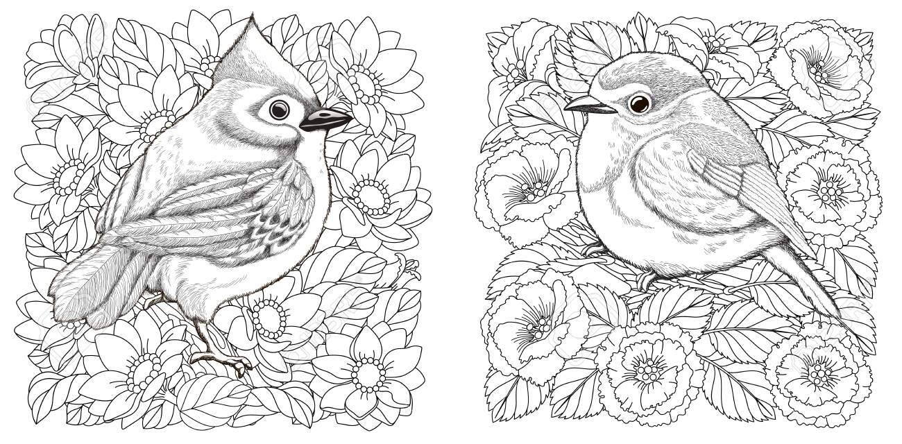 Coloring Page. Adult Coloring Book. Puffin, A Hole-nesting Auk ... | 640x1300