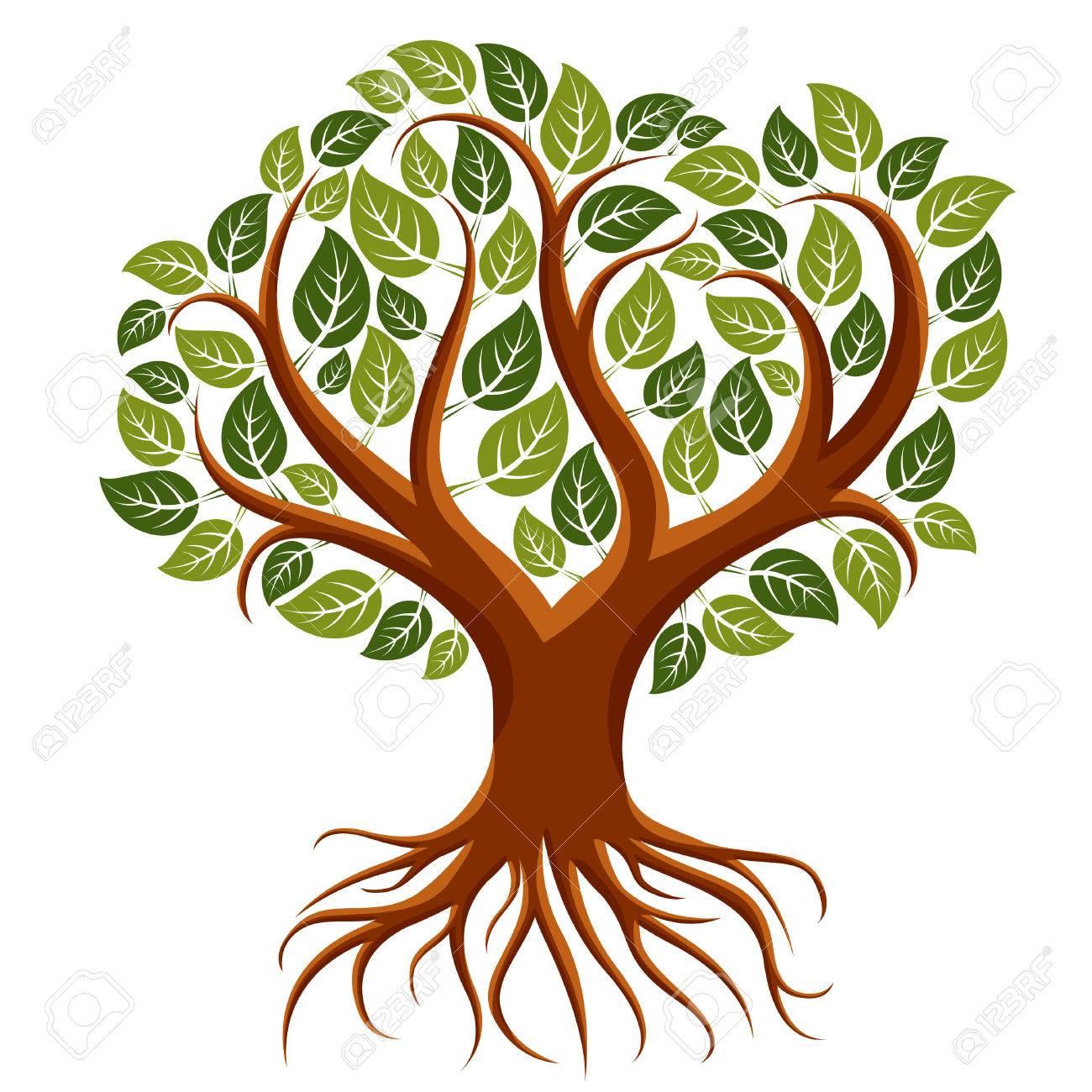 Vektor Kunst Abbildung Von Verzweigter Baum Mit Starken Wurzeln