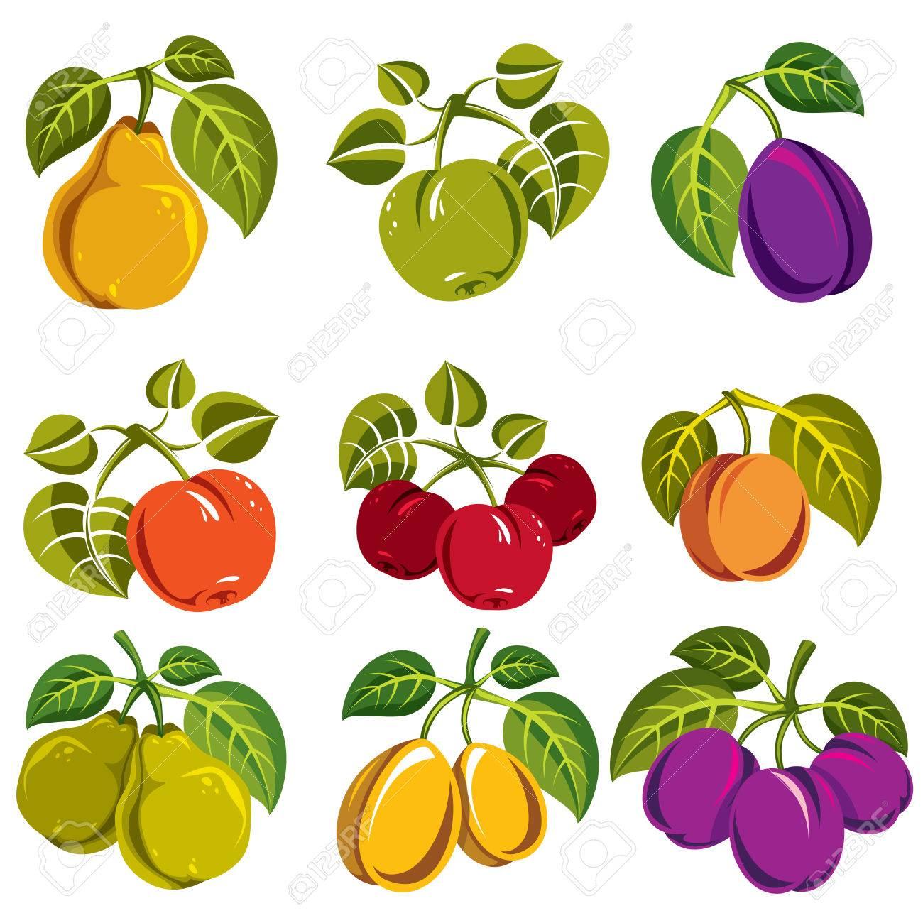 簡単な果物のコレクションのベクトルの緑の葉収穫シーズンのシンボル