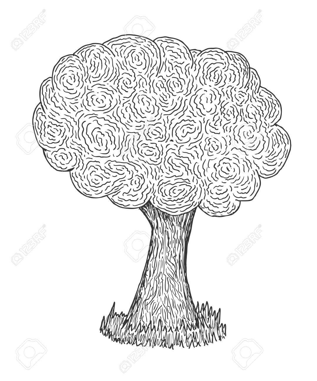 Hand drawn and sketched tree Stock Vector - 11656182
