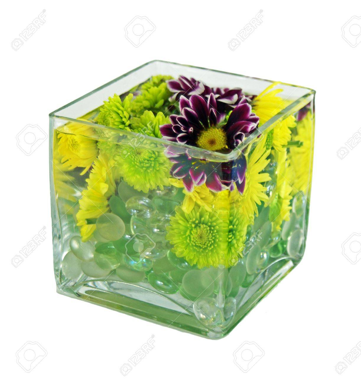Three different types of flowers under water to create a submerged..