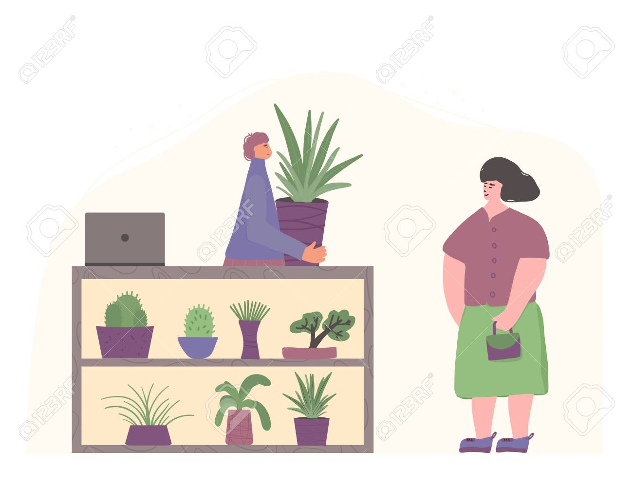 Indoor Plants Shop Sale Of Potted House Plants Seller