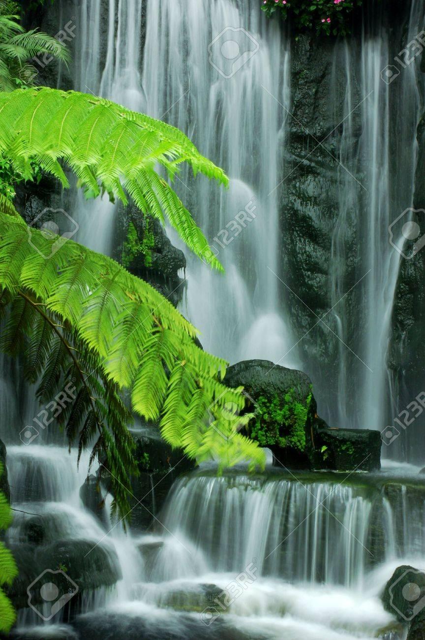 Japanese Zen Garden Waterfalls In Slow Shutter. Stock Photo   4692246