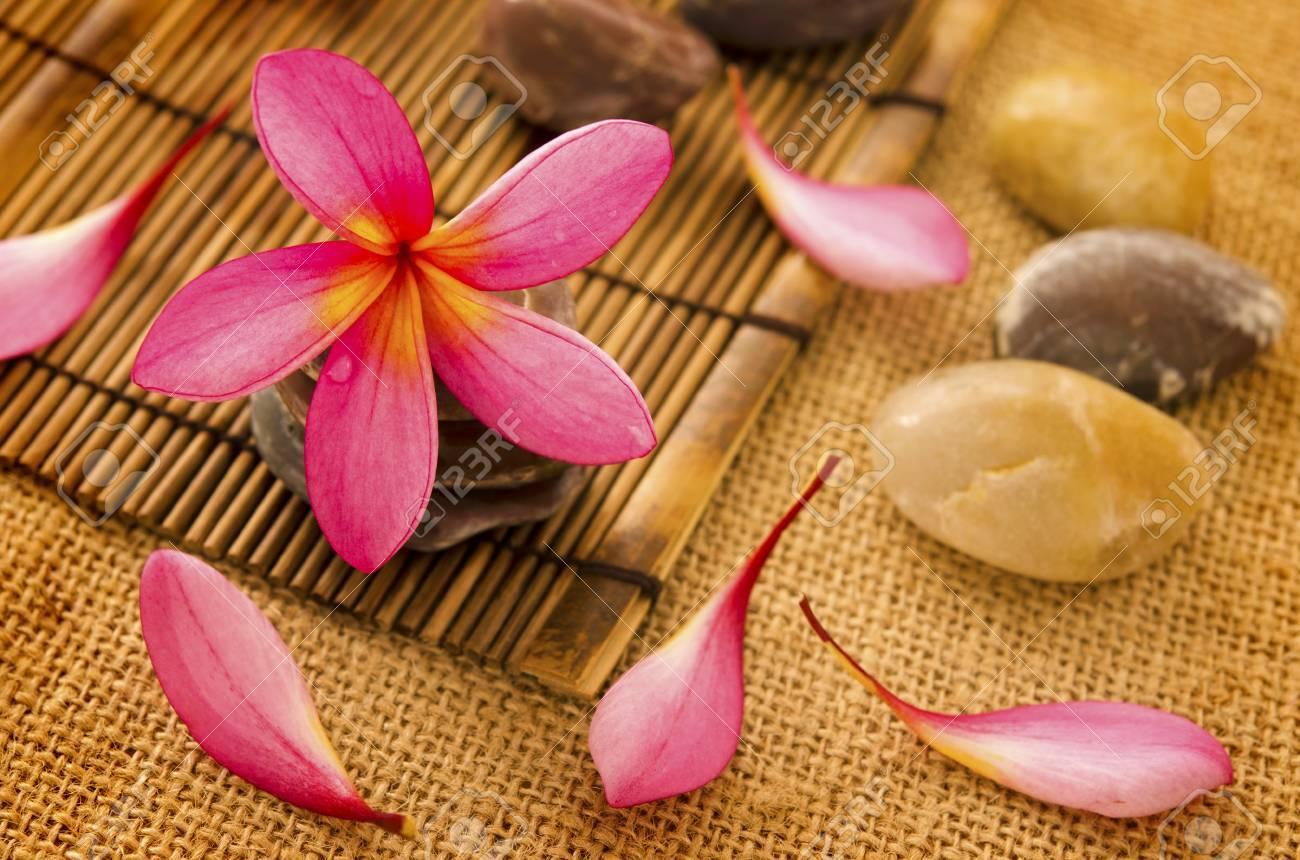 Tropical spa with frangipani flowers. Stock Photo - 14917053
