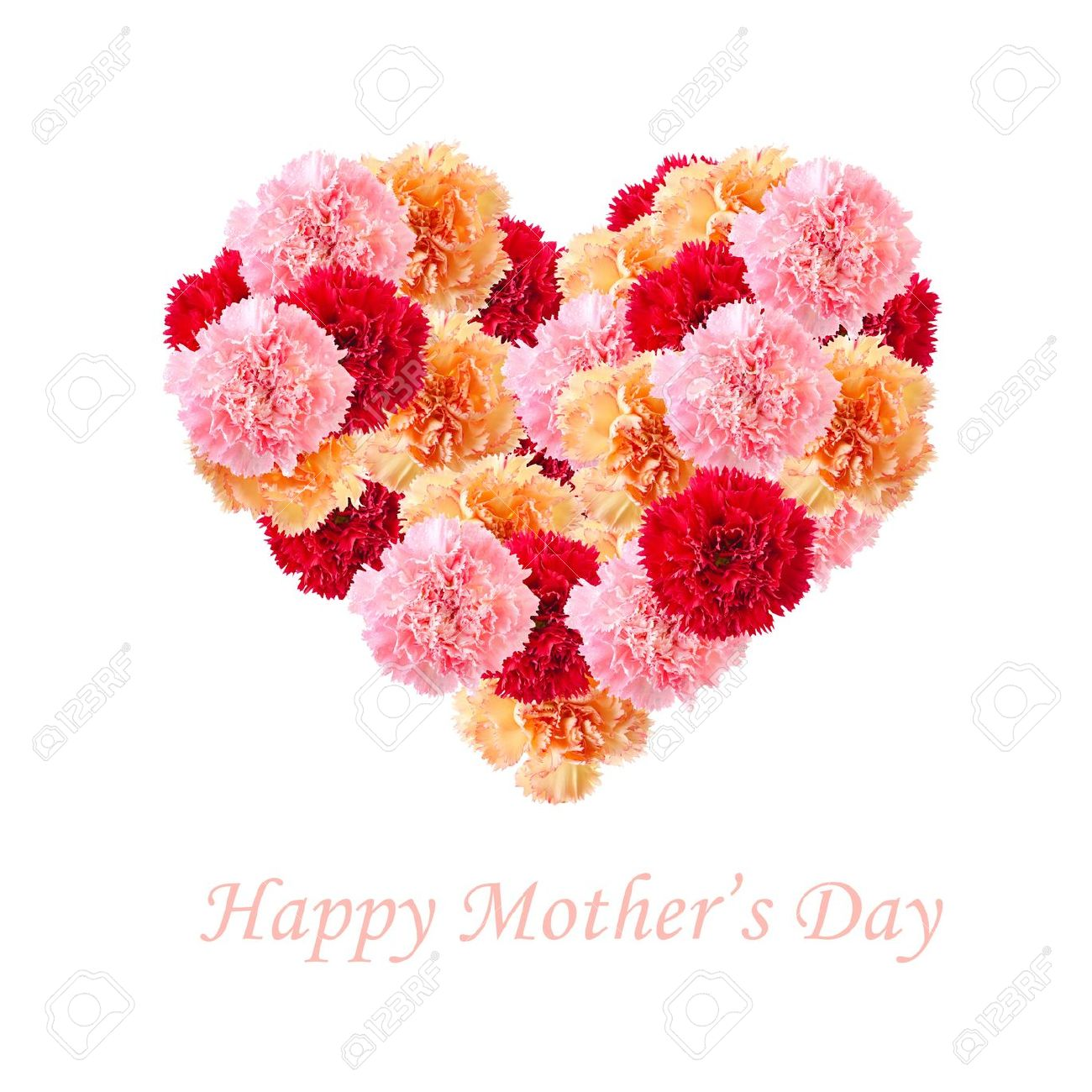 f4ece0ba2e83 Bouquet of colorful assorted carnation flowers In Love Shape isolated on  white with copy space.