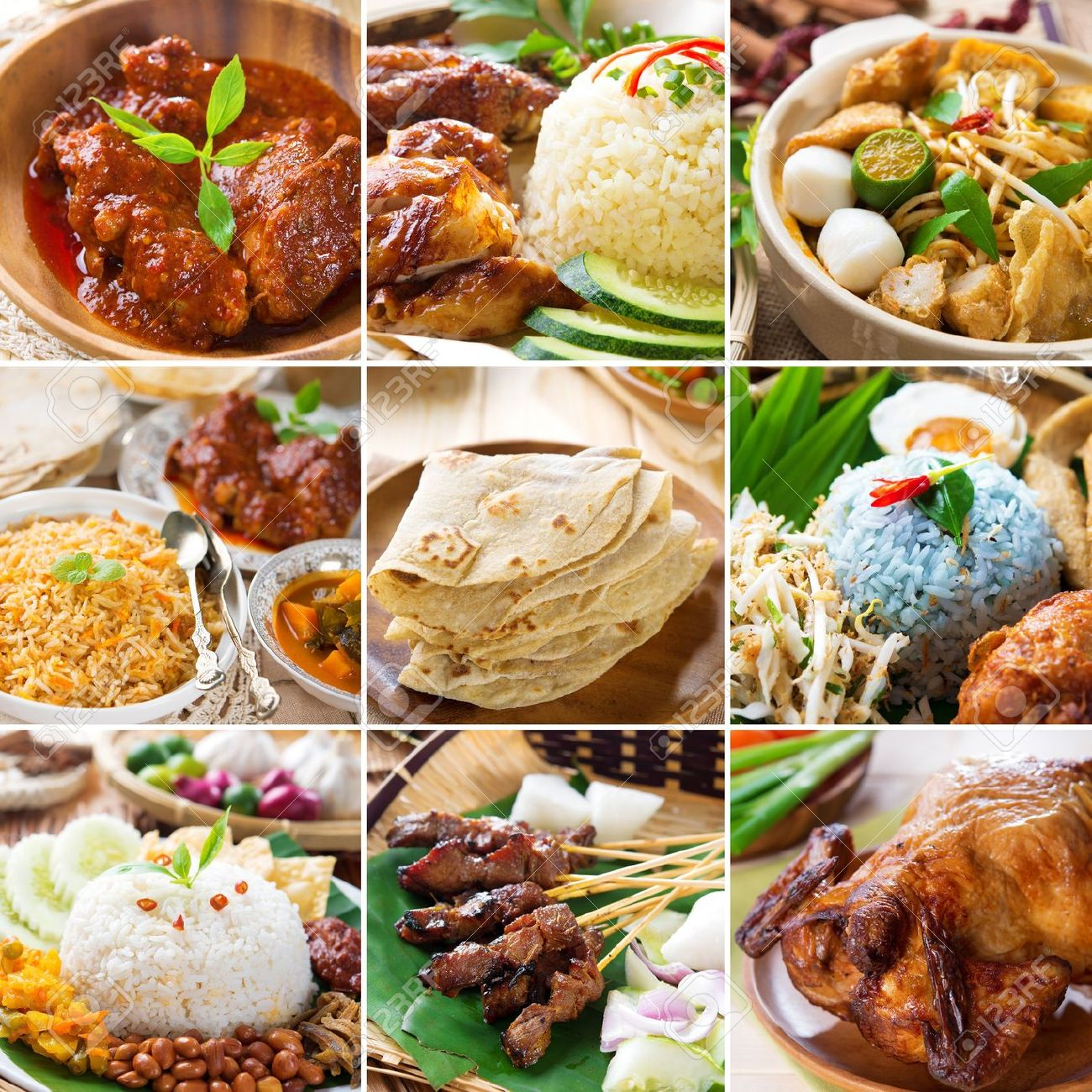 Asian food collection. Various Asia cuisine, curry, rice, noodles, biryani, roti chapatti, nasi kerabu, nasi lemak, satay and roast chicken. Stock Photo - 21373874