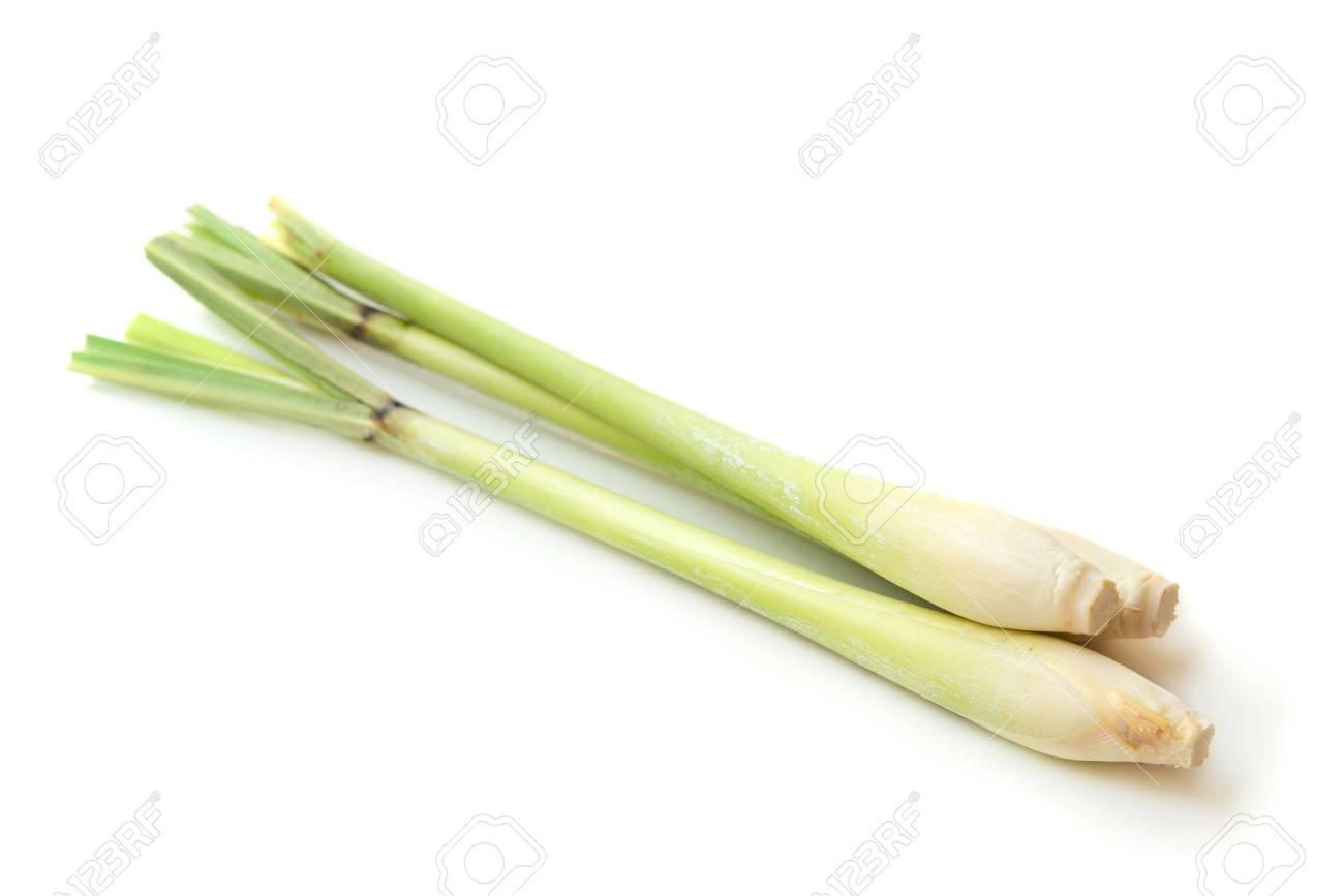 Fresh green lemongrass isolated on white background. - 113947375