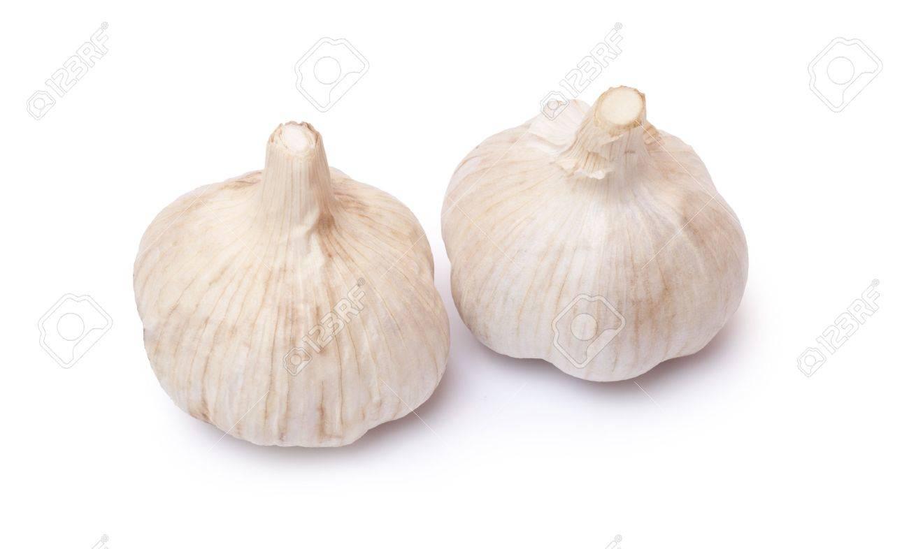 Two garlics Stock Photo - 7864507