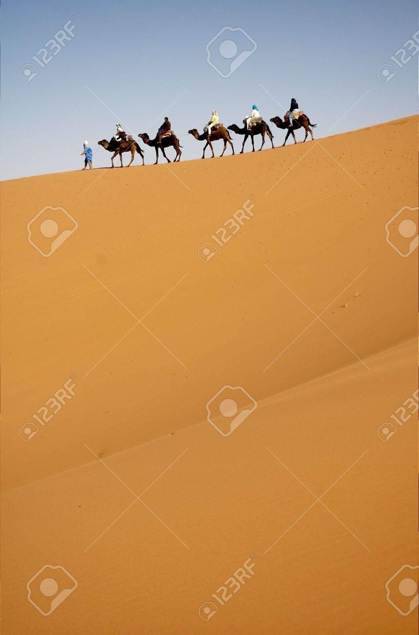 Camel caravan in the top of sand dune Stock Photo - 8193930