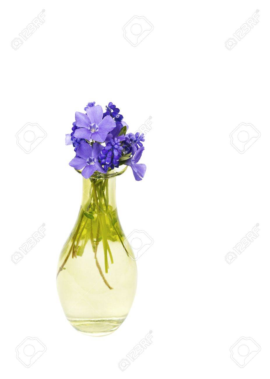 Small Purple Flowers In Bloom In Yellow Glass Vase On White