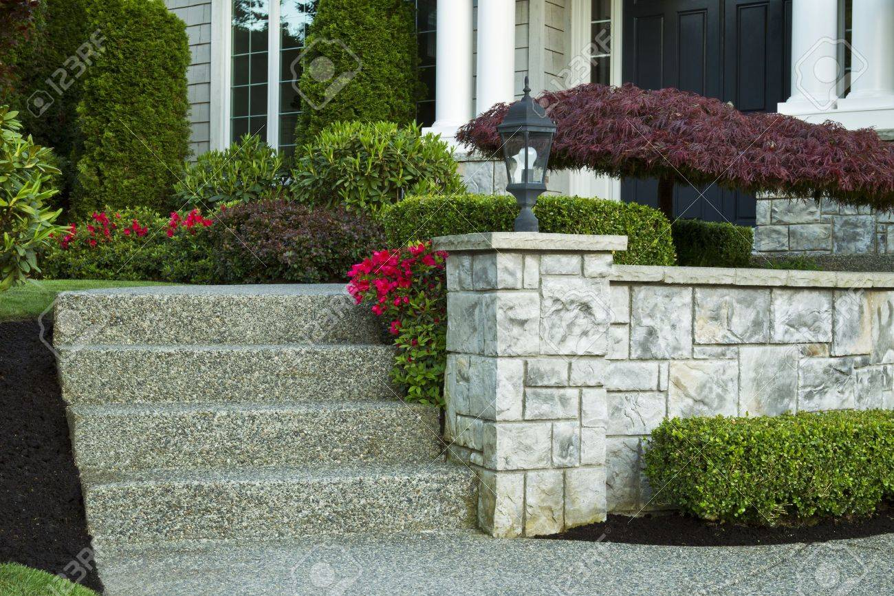 Front steps leading to front yard with red flowers in bloom and maple tree in front of house Stock Photo - 13621076