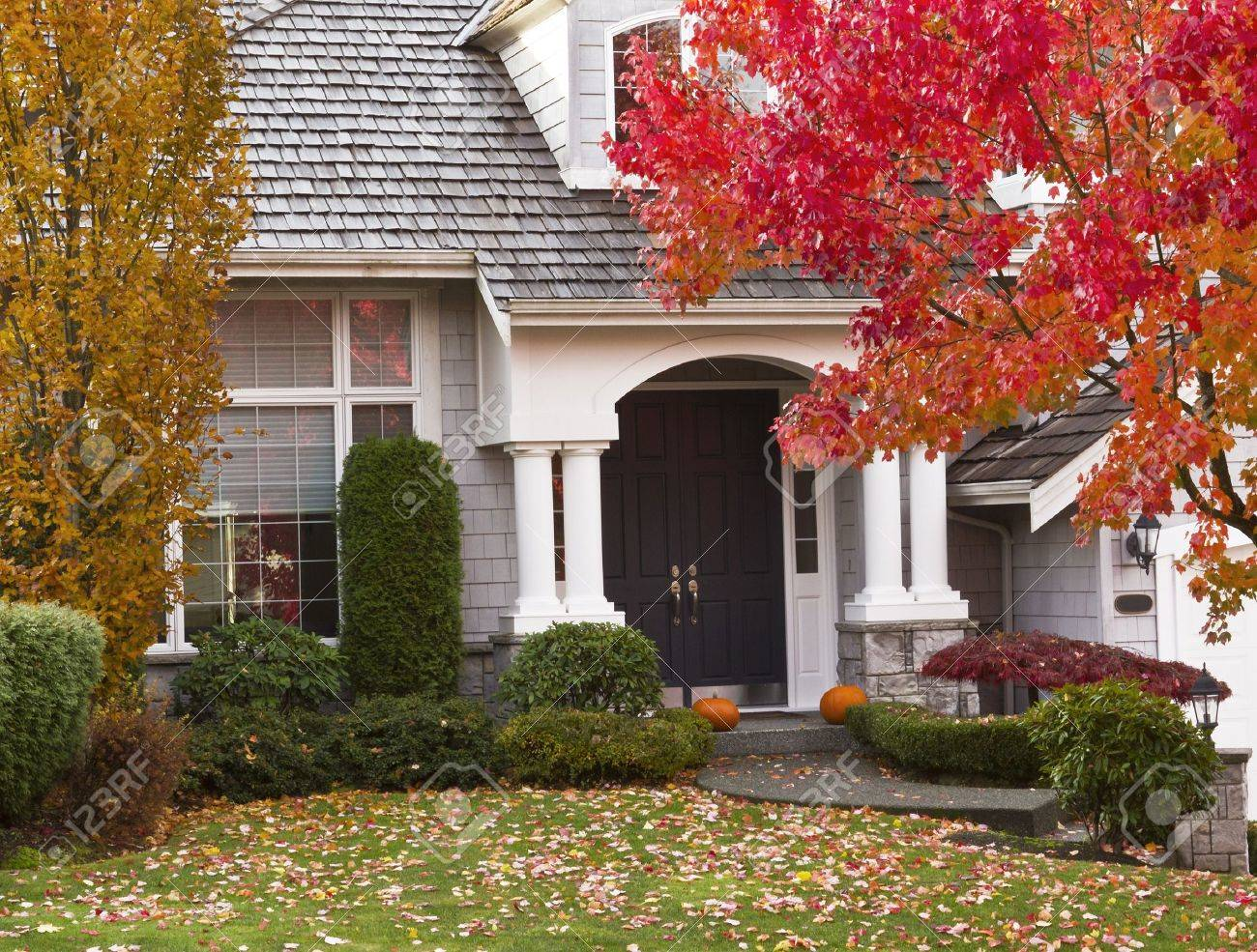 Modern home surrounded by autumn season with maple leaves on ground and trees turning bright colors Stock Photo - 15763471