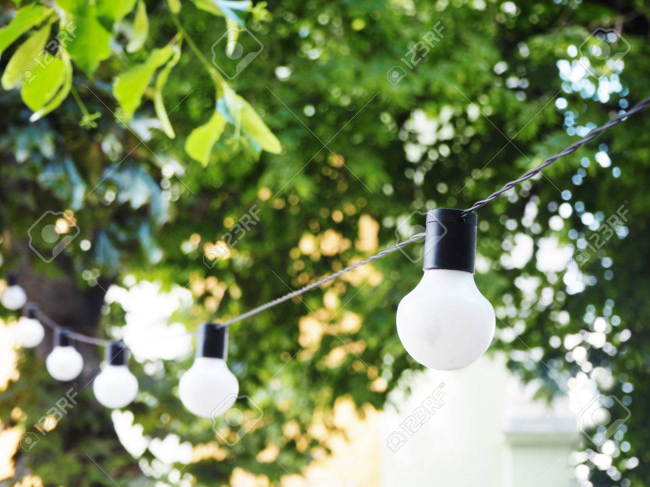 String Of Light Bulbs. Birthday Or Summer Garden Party Decoration ...