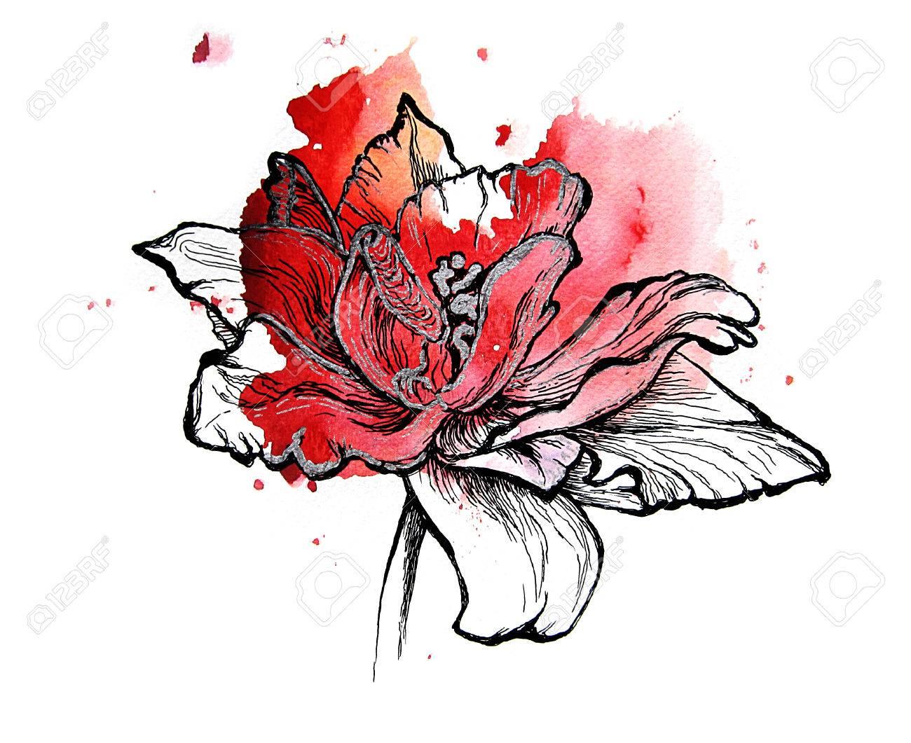 Tulipe Rouge Fait Main Dessin Noir Et Argent Sur Une Touche Daquarelle Isolé Sur Fond Blanc Texture Graphique Modèle Pour Scrapbook Element Pour