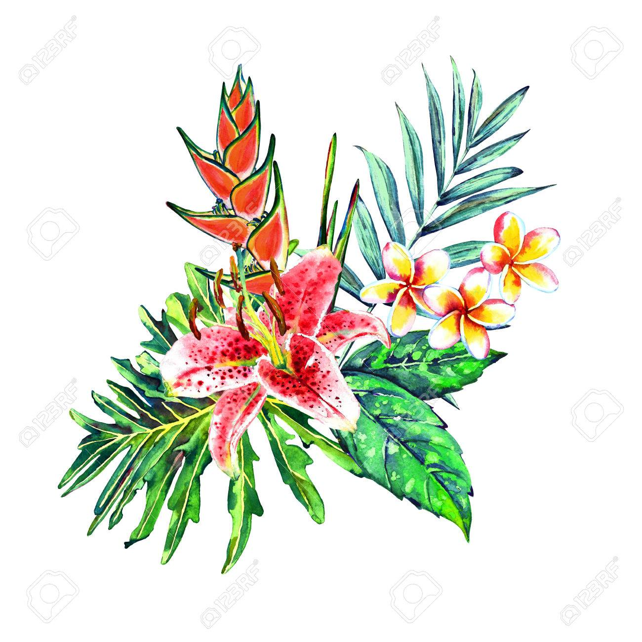 Tropical Bouquet. Exotic Flowers Of Lily, Plumeria And Heliconia ...