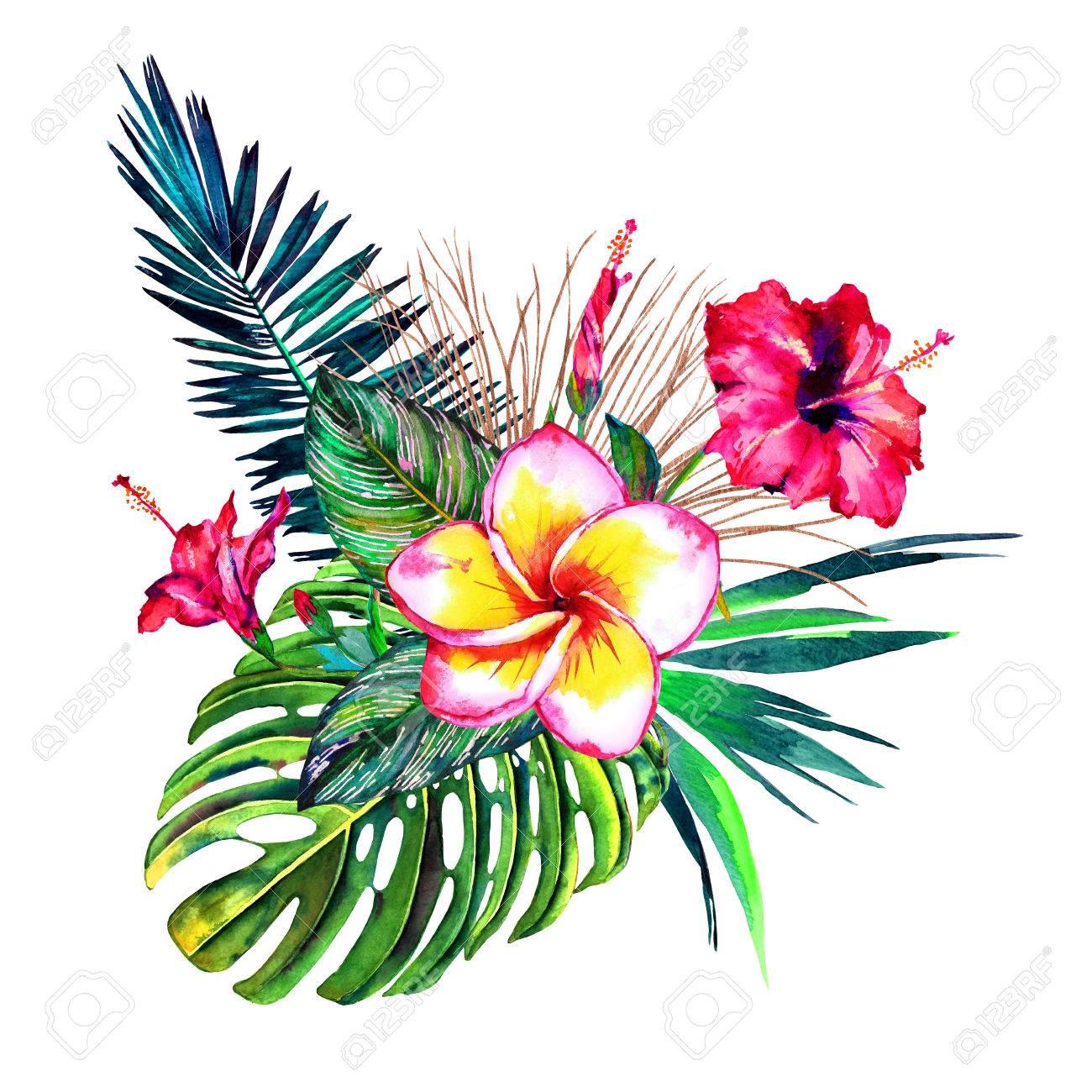 Tropical Bouquet. Exotic Flowers Of Hibiscus And Plumeria, Rain ...