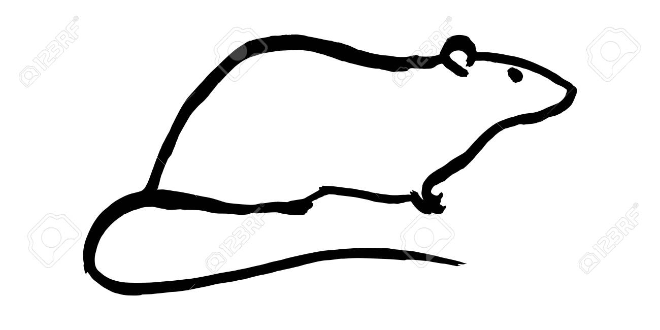 rat vector handmade ink drawing sumi e style original art royalty free cliparts vectors and stock illustration image 134691832 rat vector handmade ink drawing sumi e style original art