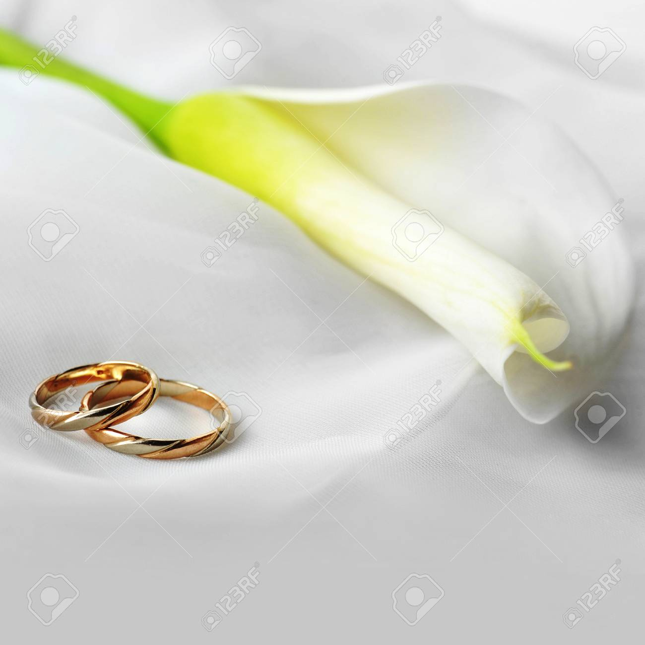 White Transparent Fabric And Wedding Rings Close Up Stock Photo