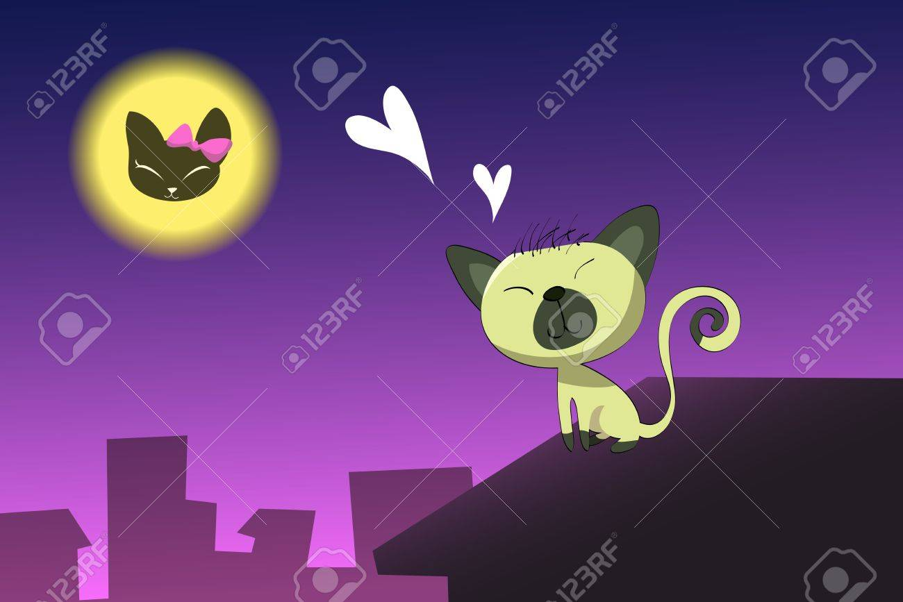 gato en el tejado en el amor foto de archivo