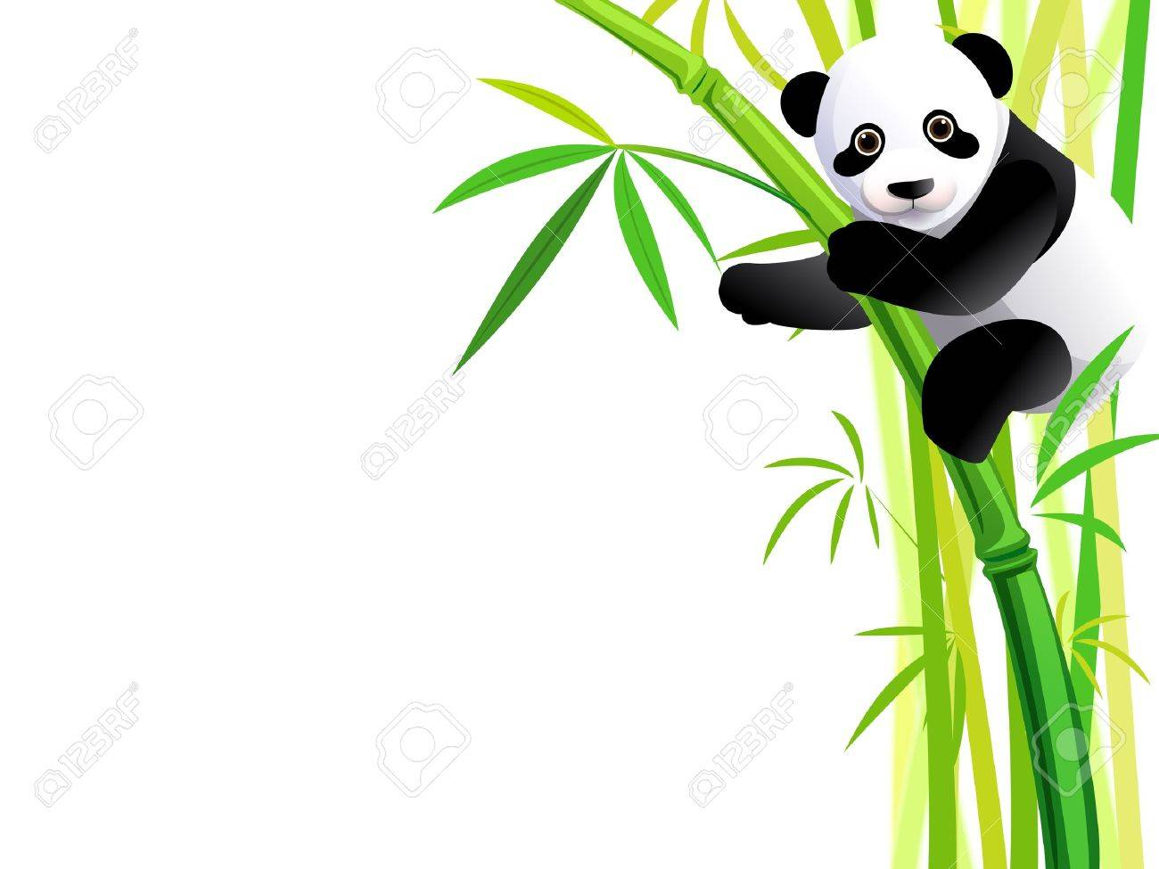 young panda hang on green bamboo forest - 17993048