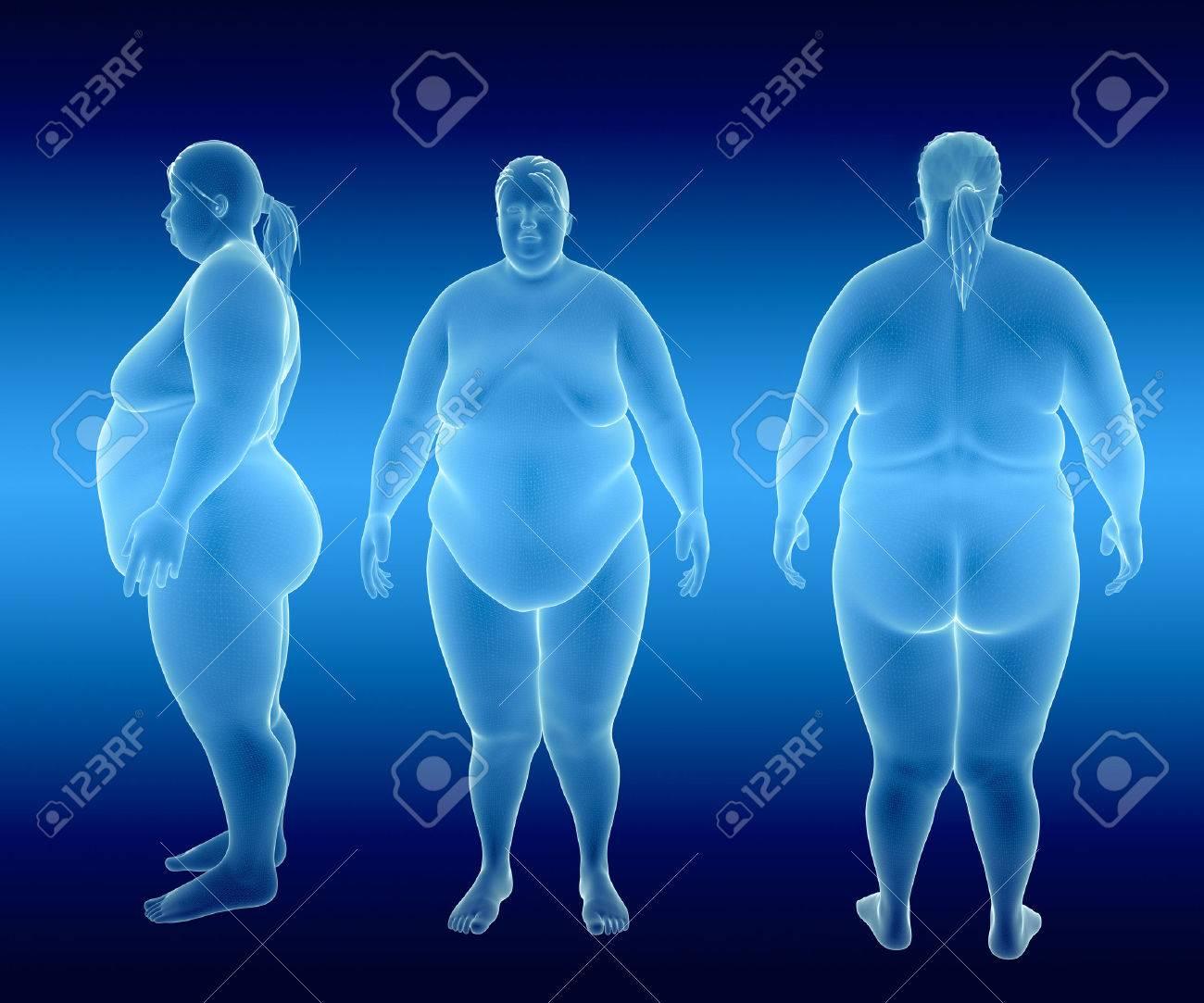 Render Ilustración De Mujer Obesa Fotos, Retratos, Imágenes Y ...