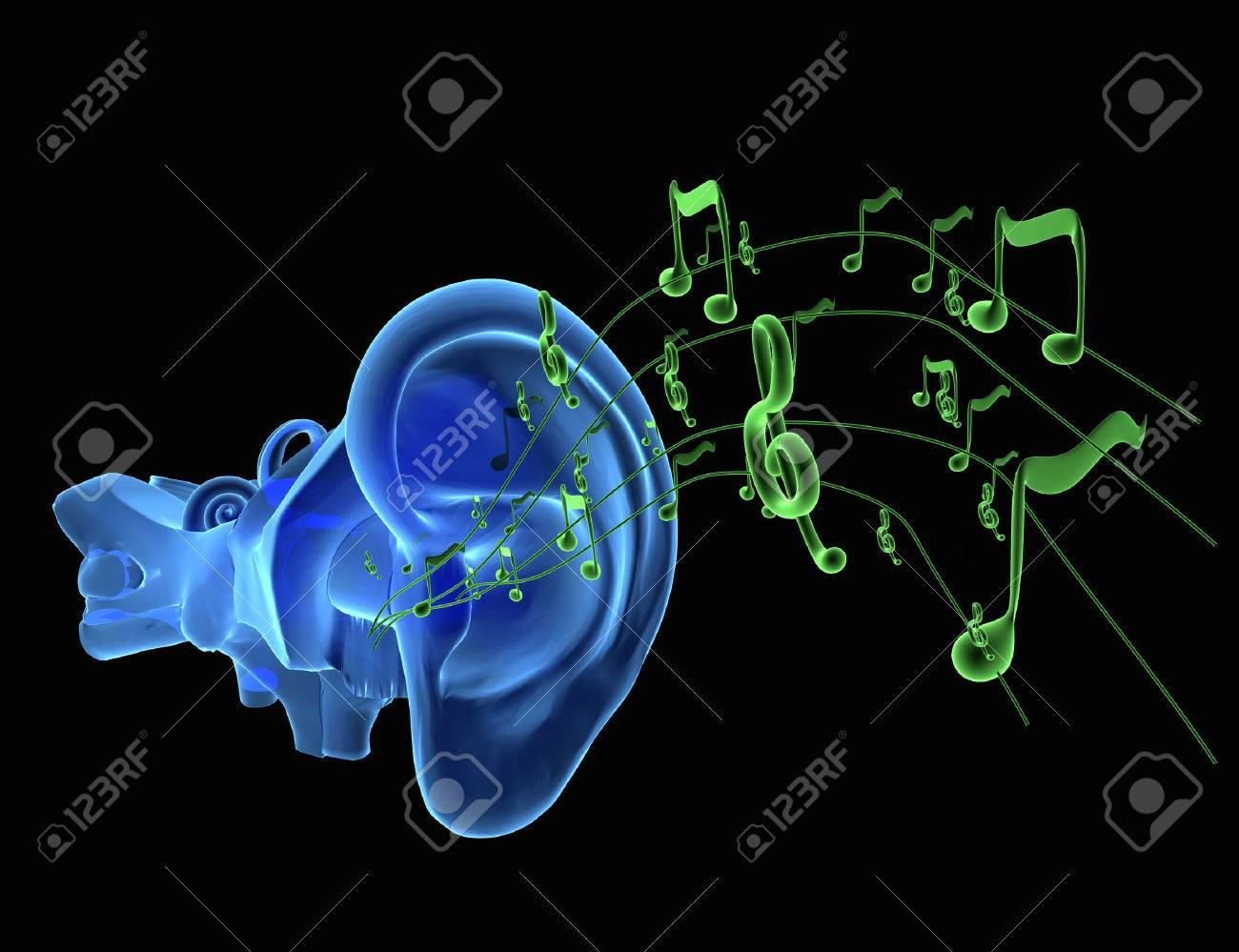 3d Illustration Of Ear Anatomy With Music Notes Coming Stock Photo