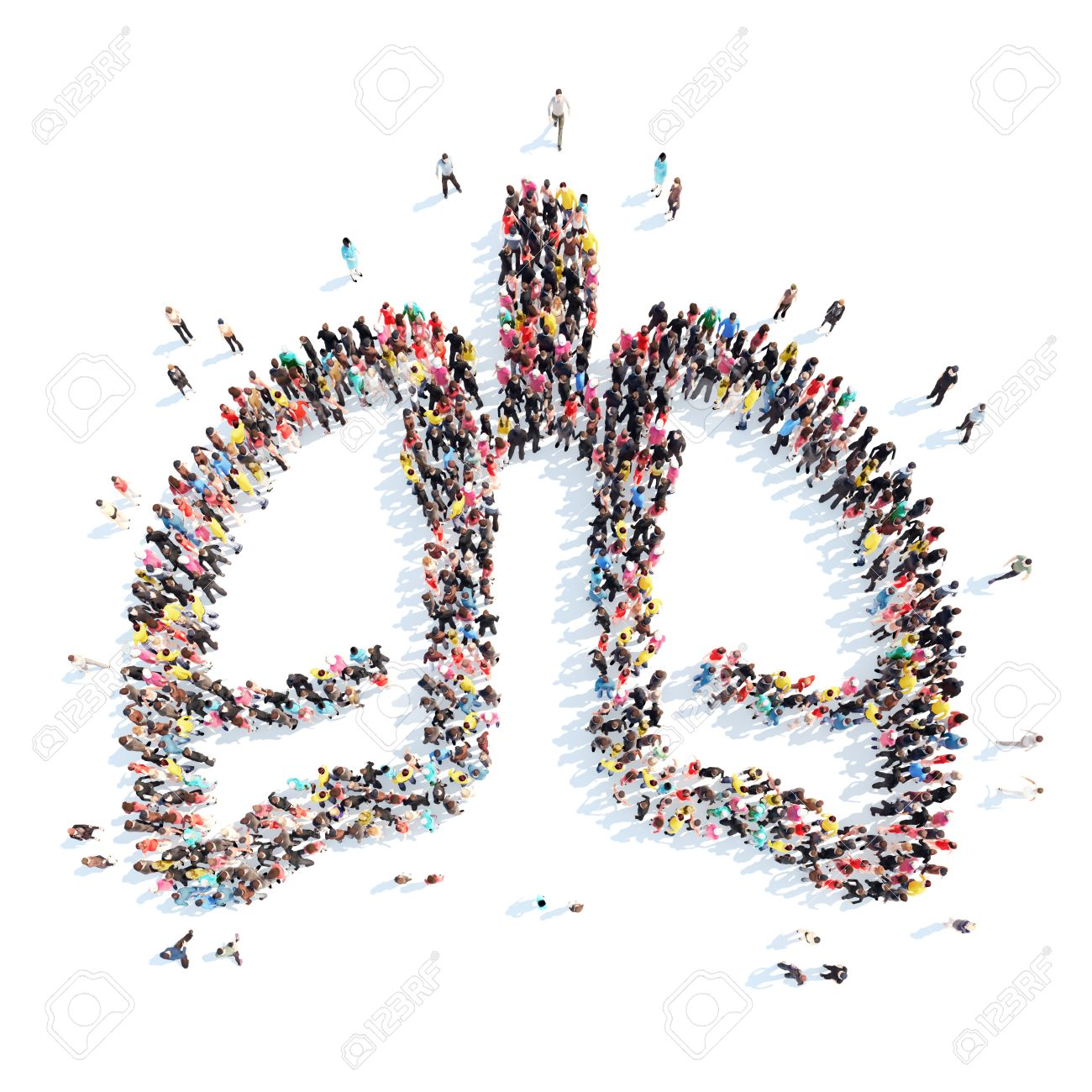 A large group of people in the form of the human lungs. Isolated, white background. - 41244339