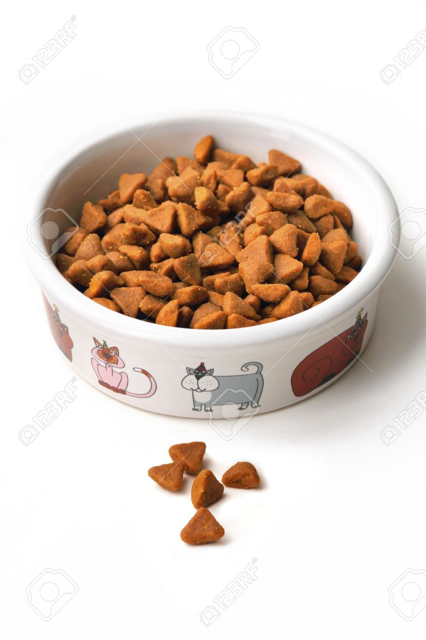 dry cat food in a ceramic bowl on white background stock photo