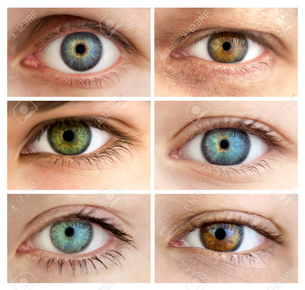 Set of 6 Real Different Open Eyes / Huge Size / Macro Stock Photo - 14697991
