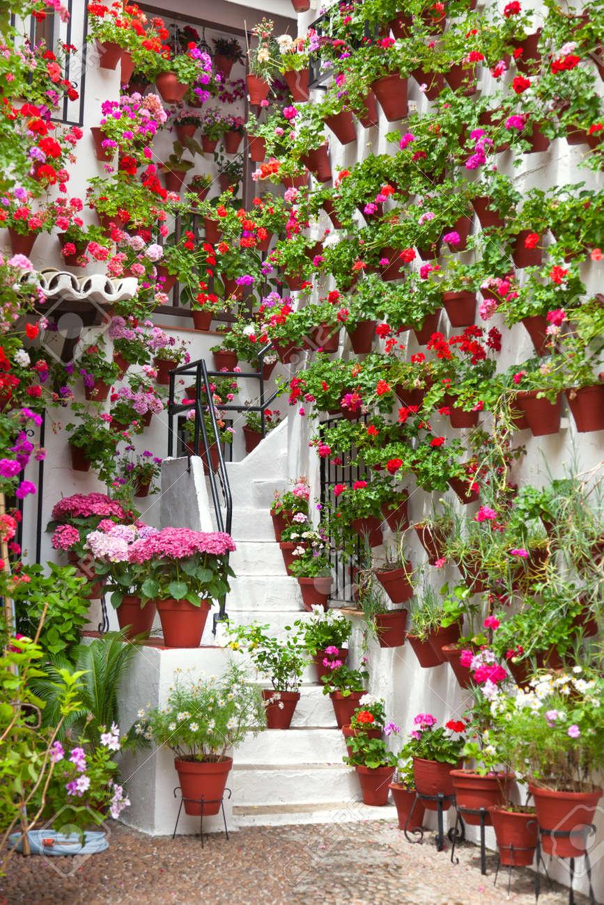Macetas Y Flores En Una Pared Blanca Old Town Europea Espaa